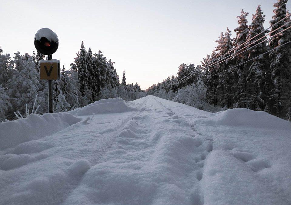 Vinter i Norrbotten